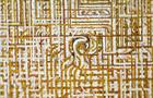 CreAzione Seconda - 2010, acrilico su tela, cm 80x100