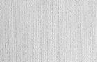 Tralci - 2015, olio su tela, cm 300x150